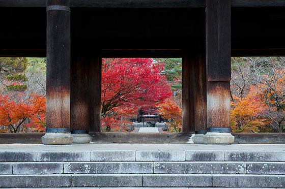 japan_autumnwindow_7