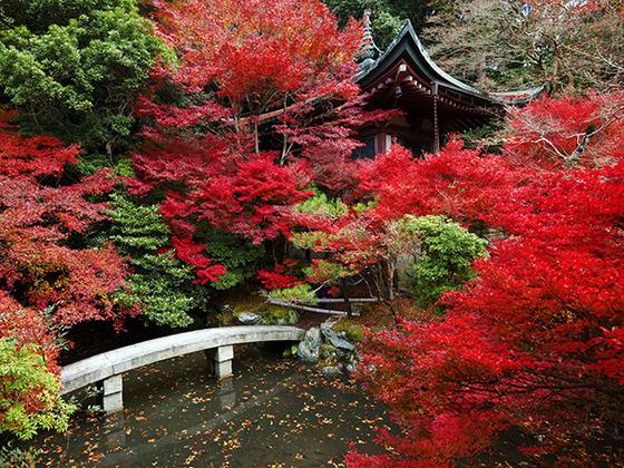autumn_place_10