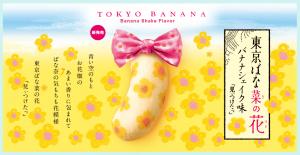 japan_Souvenirs1