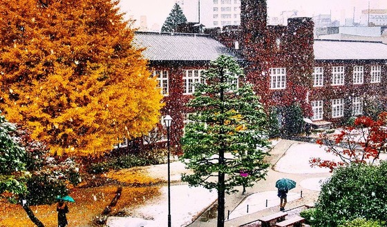 tokyo_snow_39