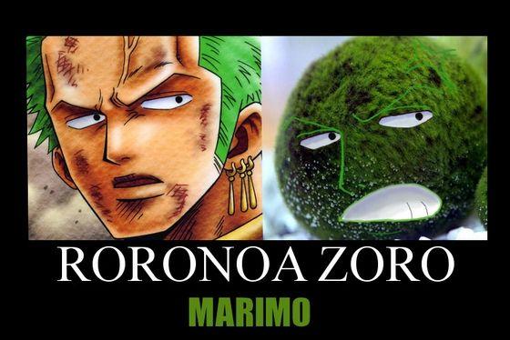 marimo9