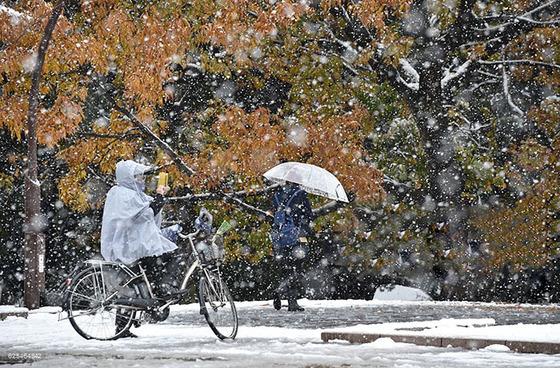tokyo_snow_35