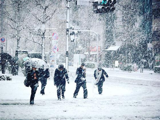 tokyo_snow_26