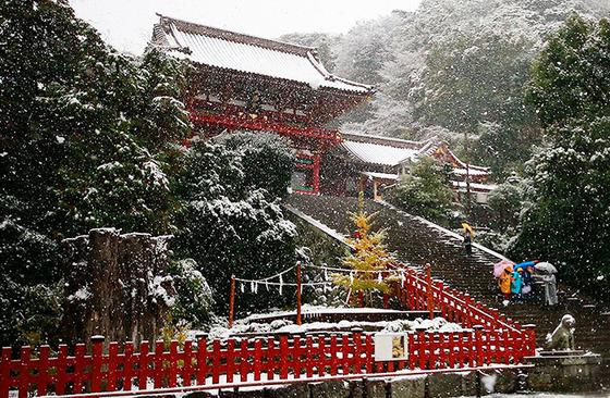 tokyo_snow_12