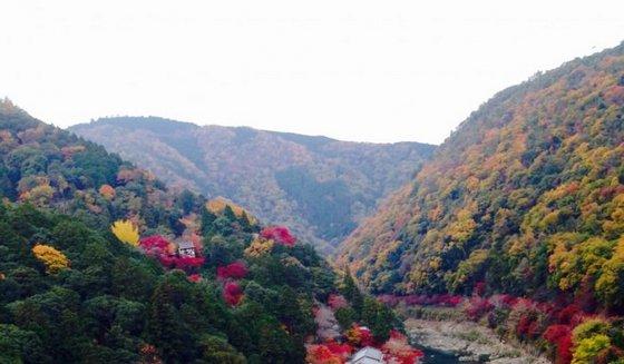 kyoto_arashiyama2