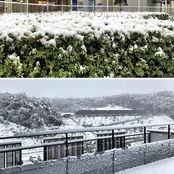 tokyo_snow_32