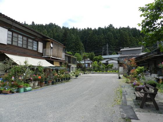 swedish_japan_trip_47