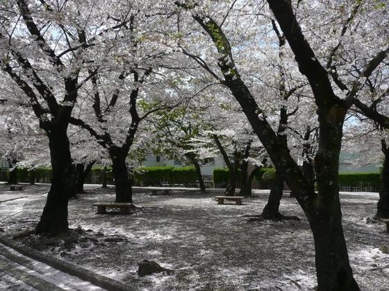 japan_trip4