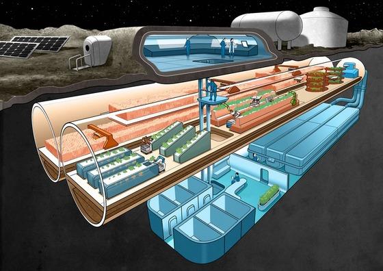 海外「宇宙への移住が更に一歩近づいたな」日本が月面での食糧生産プロジェクトを起動させたことに対する海外の反応