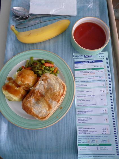 world_hospitalfood16