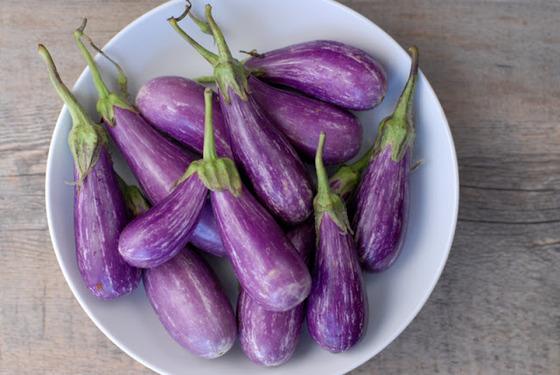 eggplant_9
