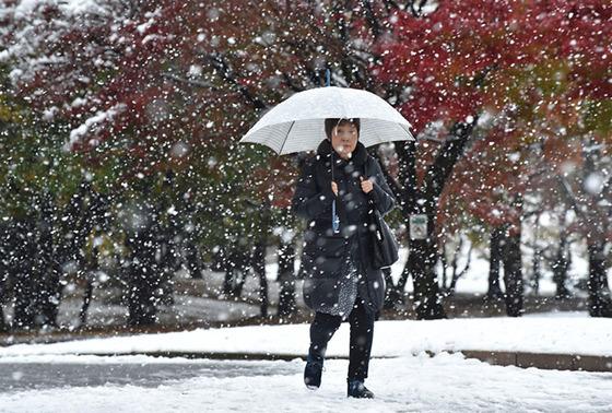 tokyo_snow_31