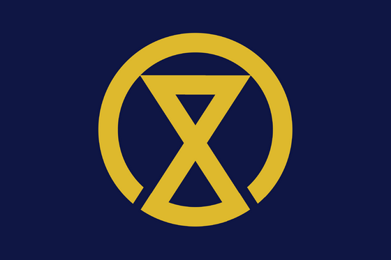 municipal_flags_8