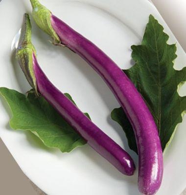 eggplant_7