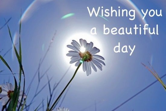 Wishing-you-a-beautiful-day