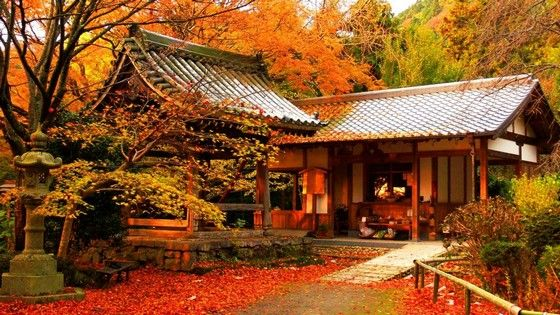 10reason_autumn_japan_1