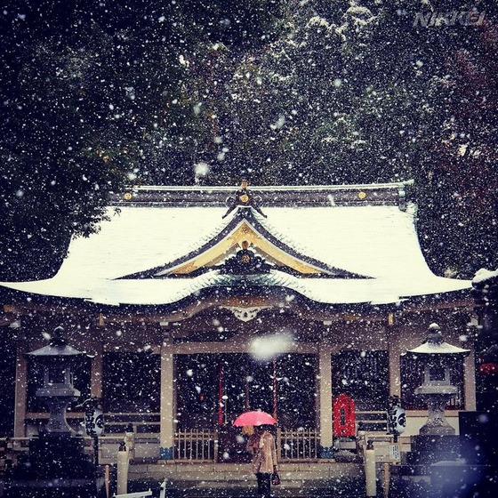 tokyo_snow_4
