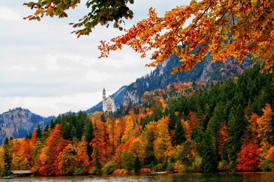 autumn_place_6