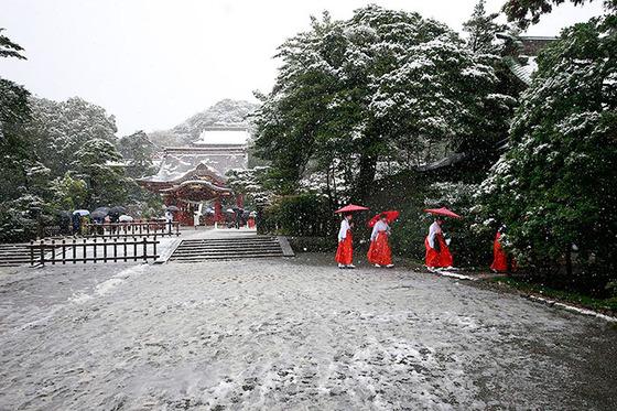 tokyo_snow_13
