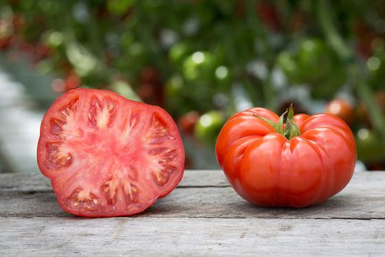 tomato_13