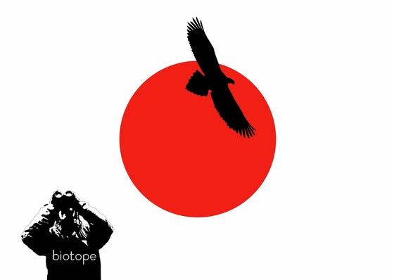 bird_japan_1