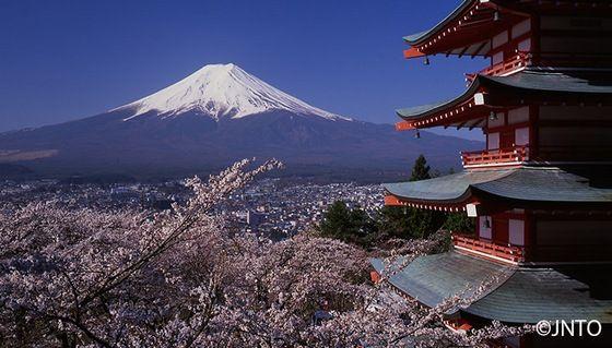 海外「15歳の引きこもりがちで偏食な息子と一緒に日本旅行をしようと思ってる」海外の反応