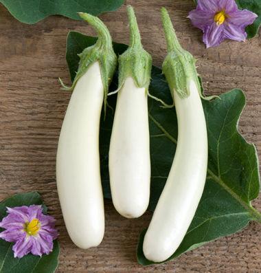 eggplant_11