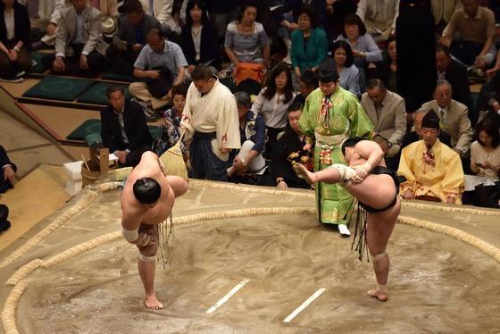 sumo_6