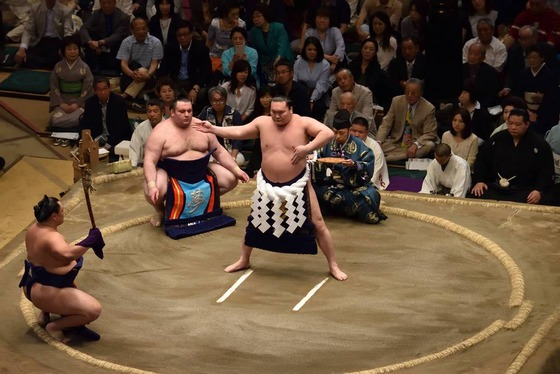 sumo_3