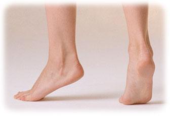 美脚の第一条件、足首のクビレが...