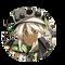 MonsterIcon_3613