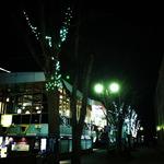 IMG_6677