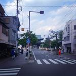 IMG_6263