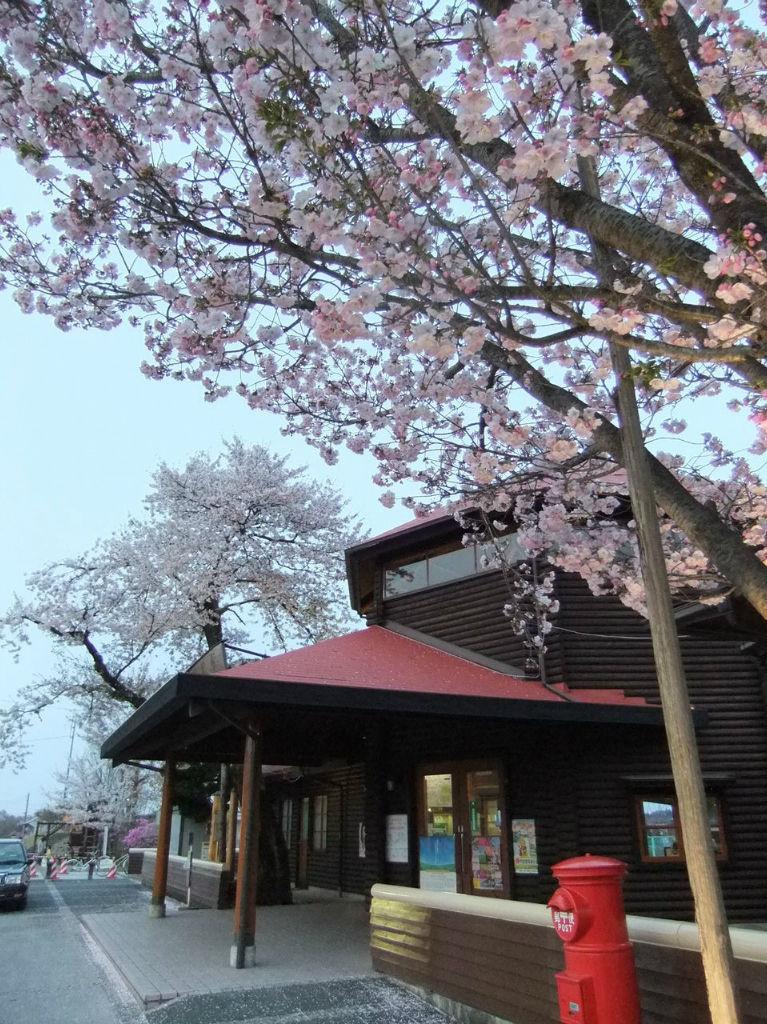 BlogPaint201204桜