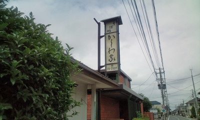 20110702113302