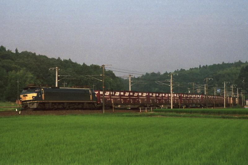 DPPs0067