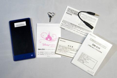 DSC08995のコピー