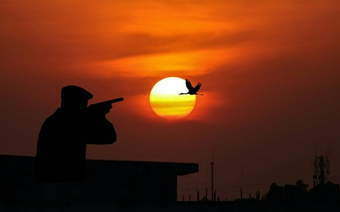 hunting-3790119_1280