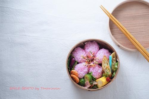 sakura-sushi02