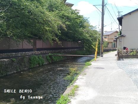 furukawa01