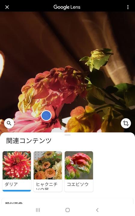 Screenshot_20200901-210439_Google