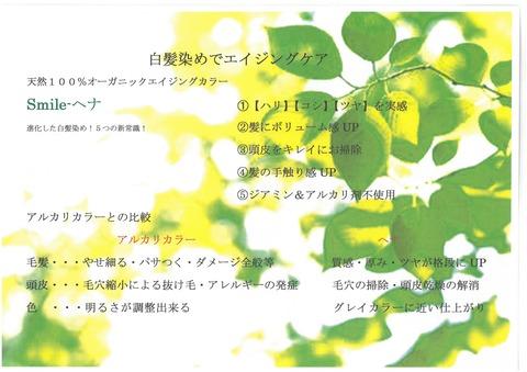 ハホニコヘナPOP (3)
