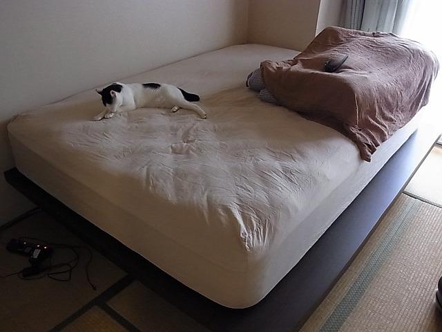 シモンズマットレスとベッドフレーム