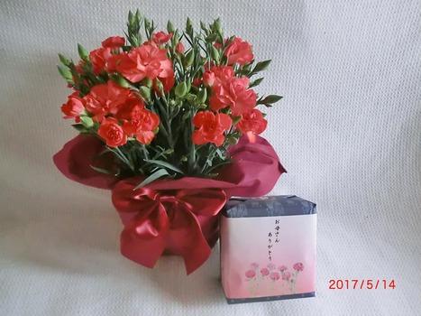 母の日プレゼント1