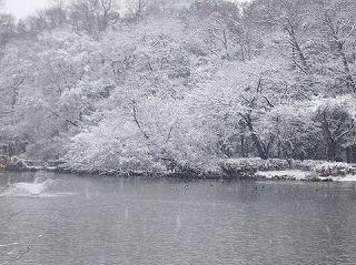 読書術本特集2011年1月