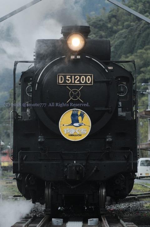 ddn1804140492