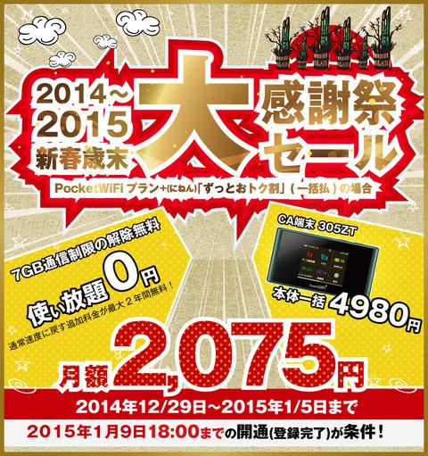 Pocket WiFi 305ZT 【一括0円!】