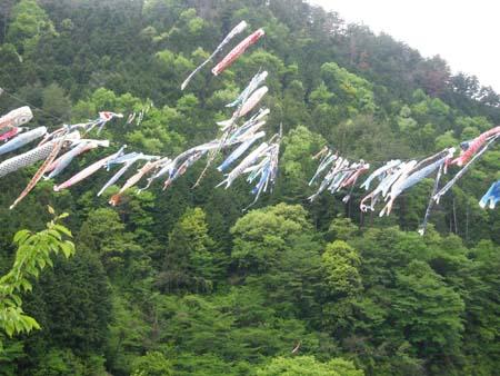 家紋 家紋検索 笠形山鯉のびり