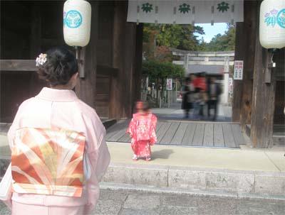多田神社、徳川葵紋、竜胆紋