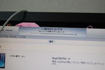 DSC_8889